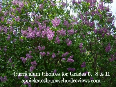 curriculum choices
