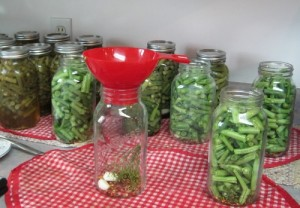 We serve these pickled beans at almost every special occasion or company meal.