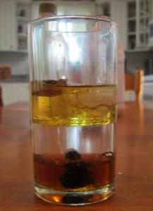 Studying Density with Apologia's General Science:  oil, water, syrup with cork, ice, a wild grape, and a rock.