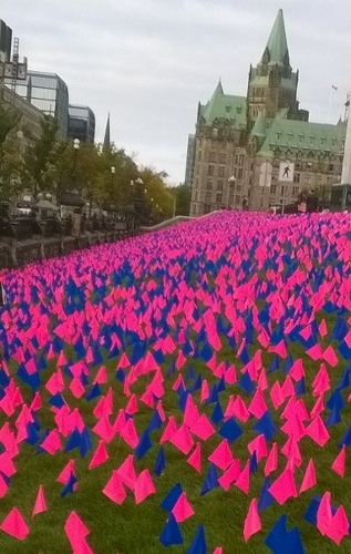 Flags representing Canadian babies aborted each year